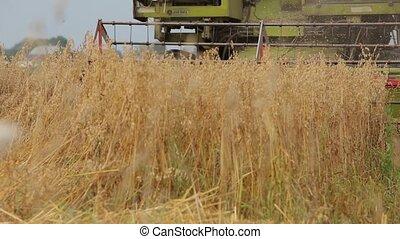 Combine mows cereals, camera to stem rising reaper - Combine...