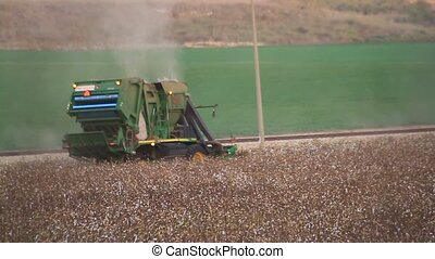 Combine Reaper in cotton field