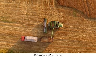 Combine unloads grain. Agricultural machines, aerial view.