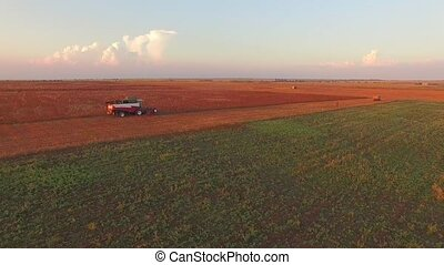 Combine Working At Field While Harvesting