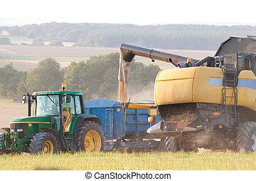 combiner, décharger, grain, moissonneuse