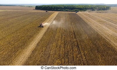 Combines harvest sunflower during the day. Aerial shoot.