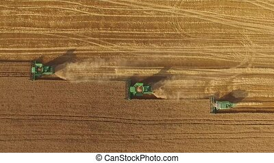 Combines in the field.