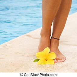 combok, alatt, a, úszás, pool., szünidő, fogalom