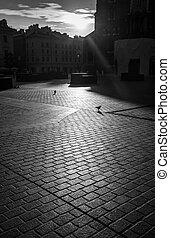 começo matutino, sombras, em, antigas, krakow
