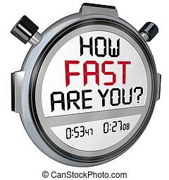 come, digiuno, ara, lei, cronometro, timer, orologio