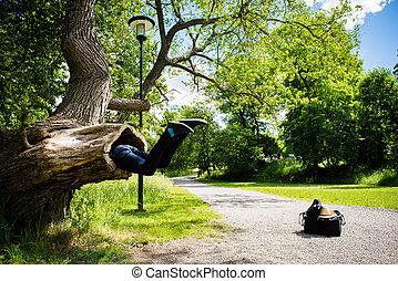 come, essendo, grande, albero, giovane, parco, occhiate, mangiato, lui, uomo