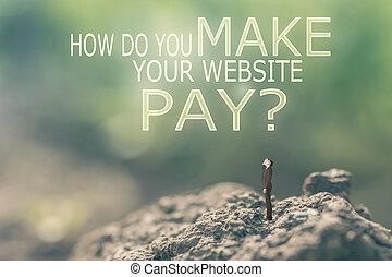 come, fare, lei, fare, tuo, sito web, pay?