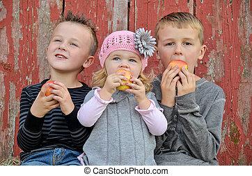 comer, crianças, maçãs