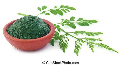 comestível, moringa, folhas, com, chão, pasta