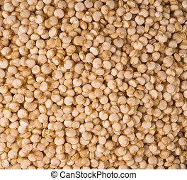comestible, sain, -, quinoa, graine, fond