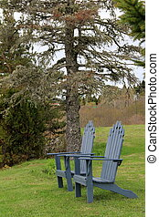 Comfortable Adirondack chairs - Two green Adirondack chairs...