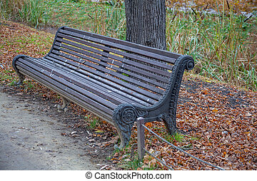 Comfortable wooden bench in the city park