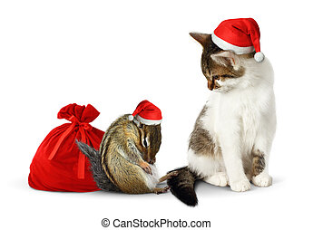 Comic xmas pets, funny chipmunk and cat with santa hat and sack