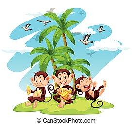 comida, plátanos, monos, tres
