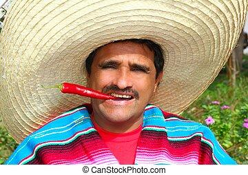 comida, sombrero, caliente, mexicano, chile, poncho, rojo, ...