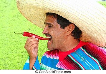 comida, sombrero, caliente, mexicano, chile, poncho, rojo, hombre