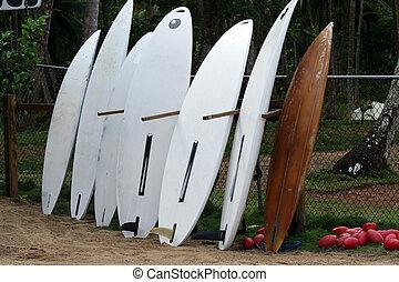 comités surf