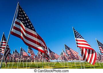 commémoratif, ou, groupe, jour, grand, américain, flags., vétérans, exposer