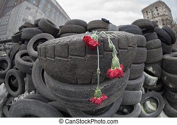 Commemoration of  Evromaydan.