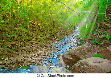 commence, descente, chute eau, sommet, chute eau, forêt, water., tomber, vue, où, paysage, bas