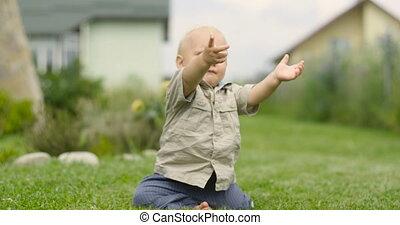 commence, regarder, herbe, séance, parc vert, haut, premier, pieds, lentement, prendre, appareil-photo., enfant, petit, étapes, obtient, sien, il