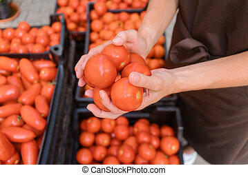 Commercial gardener showing tomatoes she grew in her hands
