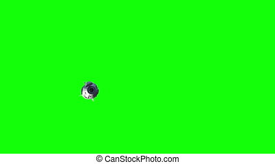 Commercial Spacecraft On Green Screen. 4K. Ultra High ...