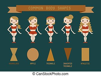 Common body shapes
