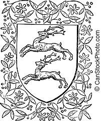 Common deer, retro design, vintage engraving - Common deer, ...