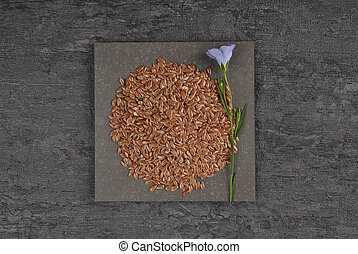 Common flax and linseed on slate