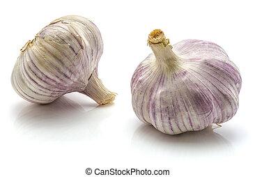 Common garlic isolated on white