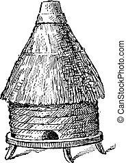 Common hive, vintage engraving.