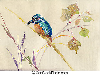 Common Kingfisher bird - Watercolor Animal Collection:...