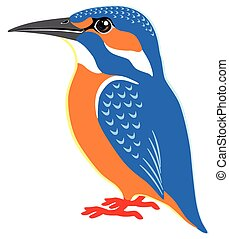 kingfisher - common kingfisher side view isolated image