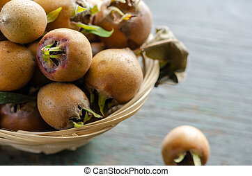 Common Medlars (Mespilus germanica), fruit - Fresh picked ...