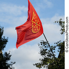 communauté, de, navarre, flag., espagne