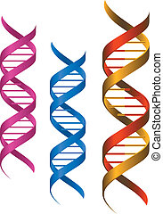 communie, dna