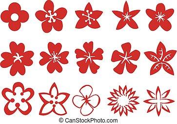 communie, vector, ontwerp, bloemen