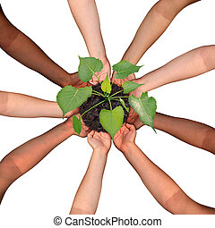 Community collaboration and cooperation concept and social crowdfunding investment symbol as a group of diverse hands organized in a circular formation nurturing a growing sapling tree as people coming together for success.