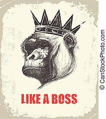 como, mono, inscripción, cara, jefe