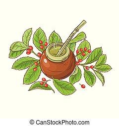 compañero, té, vector, ilustración