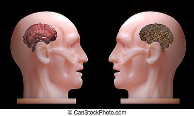 comparer, mécanicien, cerveau, 3d, engrenage, vrai, dispersion, têtes, ombre, exposition, subsurface, rendering., entre, homme, deux, intérieur