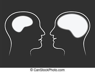 Comparing brain size
