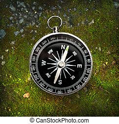 Compass on moss ground - Compass on autumn moss ground
