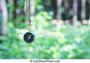 Compass on the background of greenery in the forest