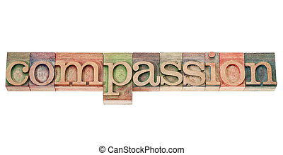 compassion word in wood type - compassion - isolated word in...