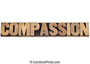 compassion word in wood type - compassion word - isolated ...