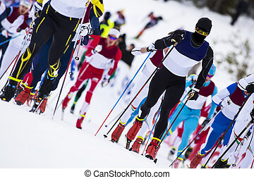 competición, país, esquí, cruz