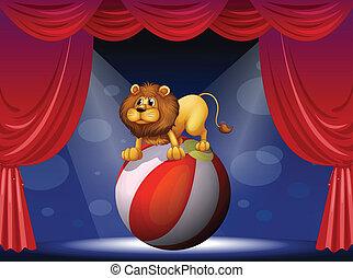 compiendo, leone, circo